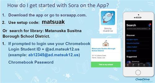 Sora on App